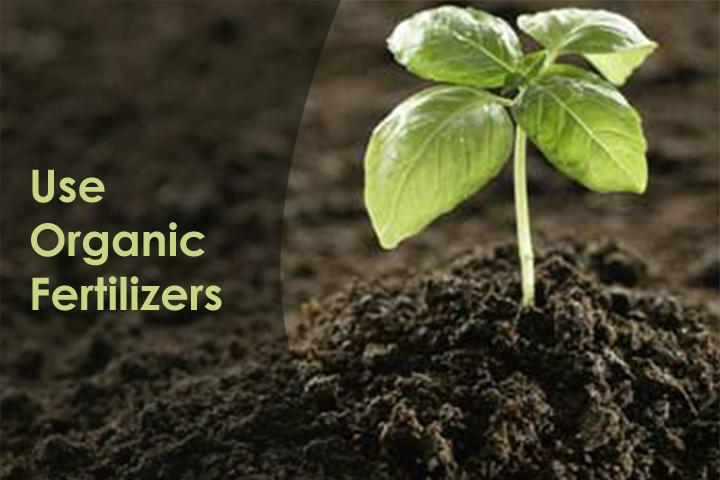 use-organic-fertilizers